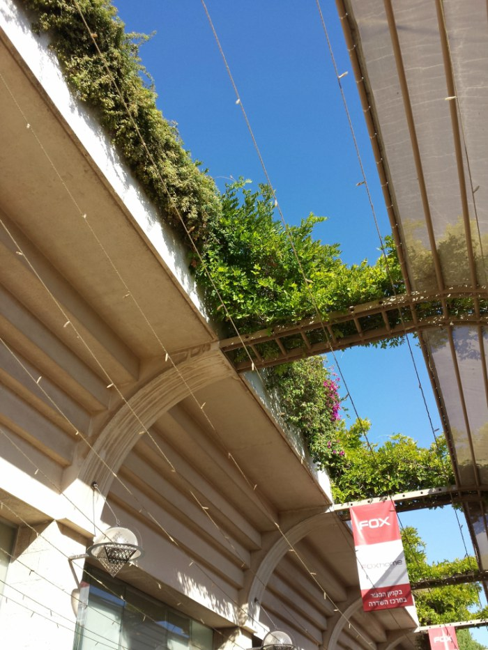 Biophilic design: plants on the roof of Mamilla in Jerusalem