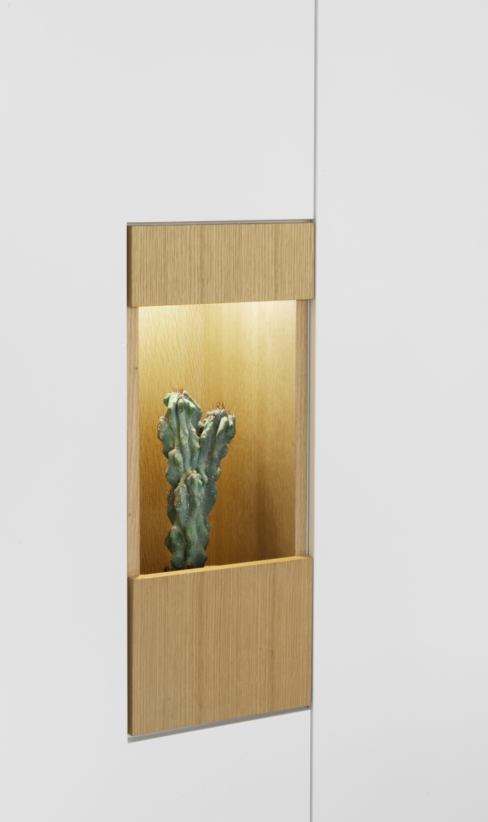 Cactus in a wall alcove in an apartment that combines warm minimalism with biophilic design