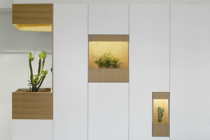 Biophilic design elements: plants in an alcove in the wall