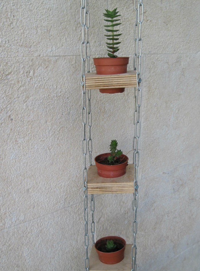 Succulents in a vertical hanging planter