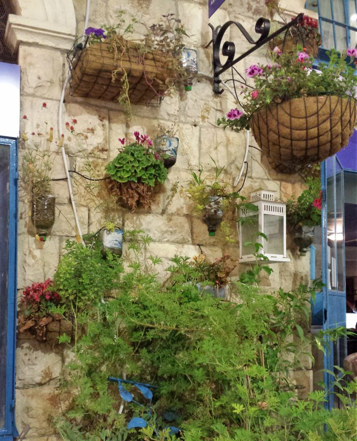 Planters filled with plants on a wall in Jerusalem