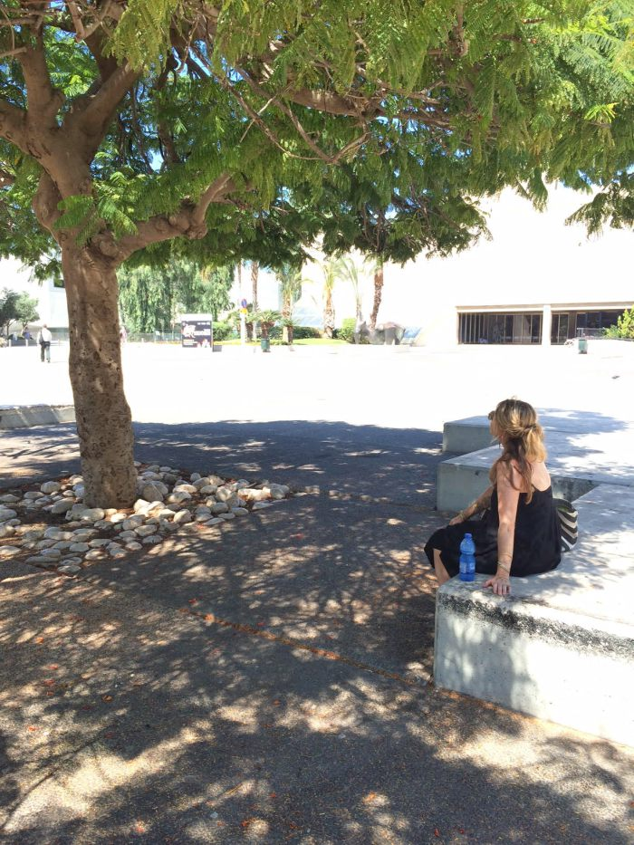 Biophilic design patterns: sitting under the shade of a tree