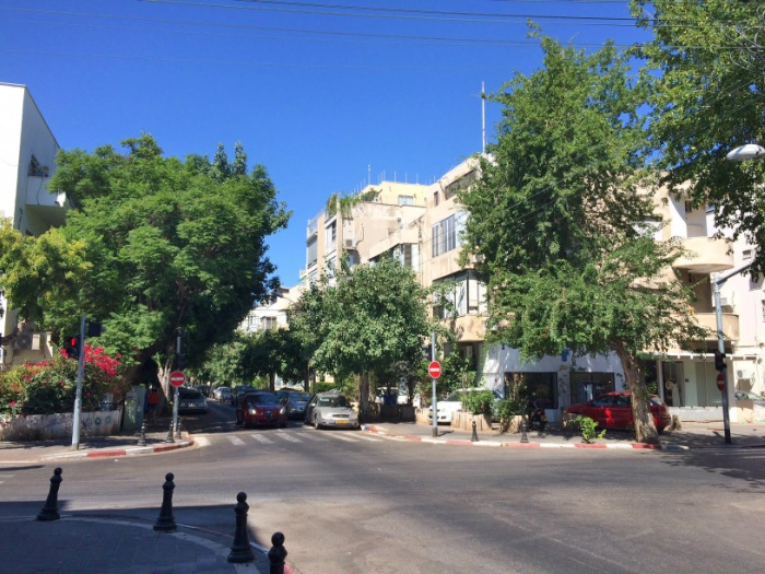 Tel Aviv Streets filled with trees