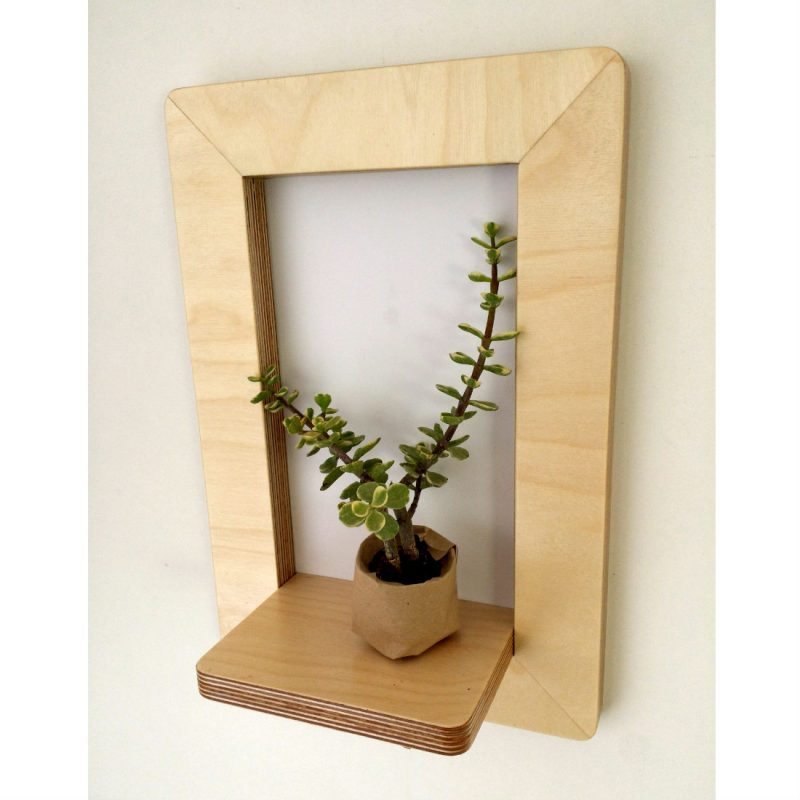 Marco Frame Shelf with succulent plant from brightblueliving.com