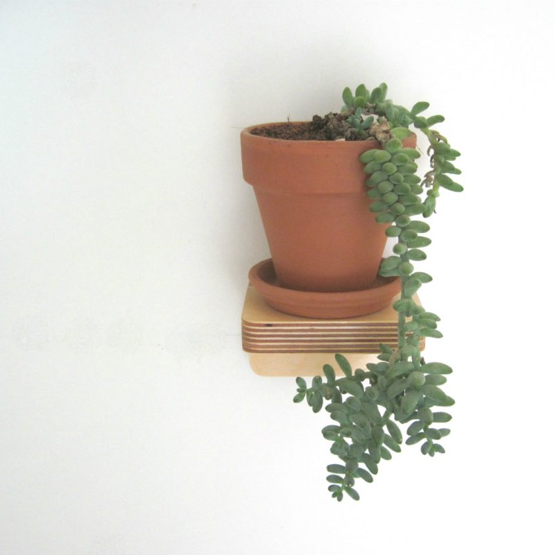 Piccolo Shelf with hanging succulent from brightblueliving.com